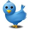twitterbird100